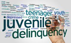 Εγχειρίδιο για τους επιμελητές ανηλίκων και τους επιμελητές κοινωνικής αρωγής