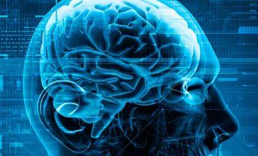 Νευροεπιστήμες: Από το εργαστήριο στις αίθουσες των Δικαστηρίων