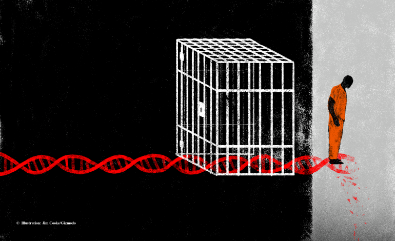 DNA και Ποινική Απόδειξη.H Δογματική του άρ. 201 ΚΠΔ