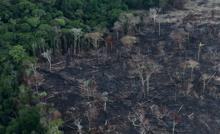 Οικοκτονία(ecocide):αναφορά στο Διεθνές Ποινικό Δικαστήριο για την οικολογική καταστροφή του δάσους του Αμαζονίου